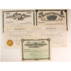 Montana Non-Mining Stock Collection  (77063)