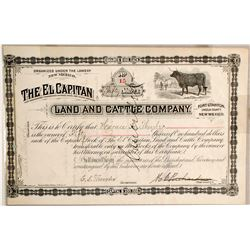 El Capitan Cattle Stock  (89109)