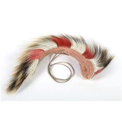 Porcupine Hair Roach  (87860)