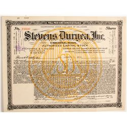 Stevens Duryea, Inc.  (89724)