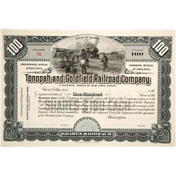 Tonopah and Goldfield Railroad Stock  (89825)