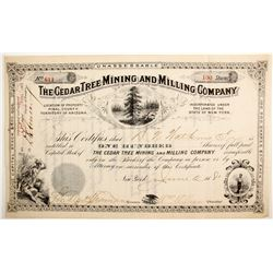 Cedar Tree Mining and Milling Company Stock  (77026)