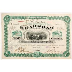 Bradshaw Mining Company Stock - Very Rare  (77013)