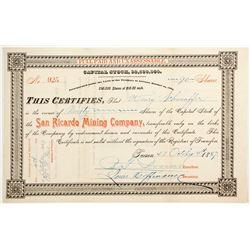 San Ricardo Mining Company Stock  (77015)