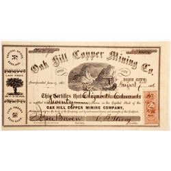 Oak Hill Copper Mining Company Stock  (90481)