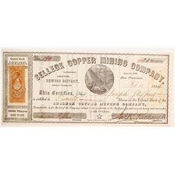 Selleck Copper Mining Company Stock  (90480)