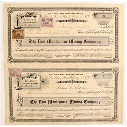 New Montezuma Mining Company Stock  (89424)