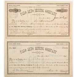 Palo Alto Mining Company Stocks (2)  (90424)