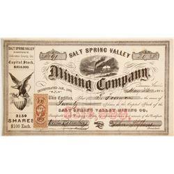 Salt Spring Valley Mining Company Stock  (90506)