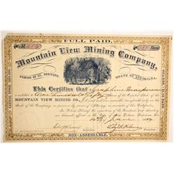 Mountain View Mining Company  (91032)