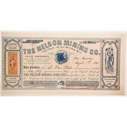 Nelson Mining Company Stock  (88149)