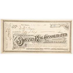 Bonanza King Consolidated Mining Company Stock  (88161)