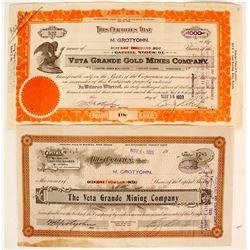 Veta Grande Gold Mines Company - 2 stock cert.  (91056)