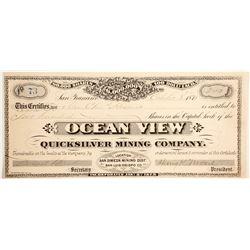 Ocean View Quicksilver Mining Company Stock  (90438)
