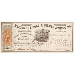 Baltimore Gold and Silver Mining Company Stock  (80320)