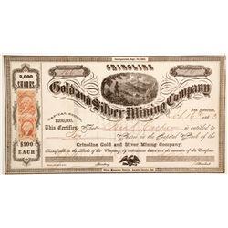 Crinoline Gold and Silver Mining Company Stock  (80323)