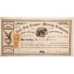 Bull Dog Copper Mining Company Stock   (90455)