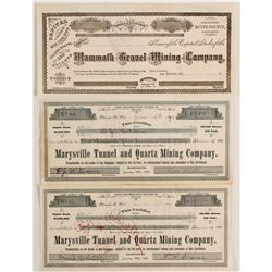 Marysville Tunnel & Quartz Mining Company and two other stocks  (90428)