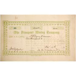 Prospect Mountain Mining Company Stock  (89419)