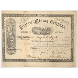 Pilgrim Mining Company Stock  (90524)