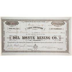 Del Monte Mining Company of Colorado Stock  (89464)