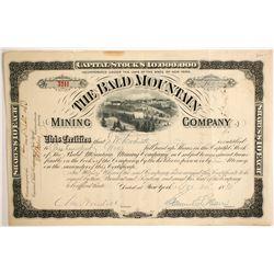 Bald Mountain Mining Stock  (89360)