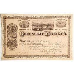 Greenleaf Mining Company Stock  (89429)
