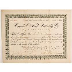 Capital Gold Mining Company Stock  (77072)