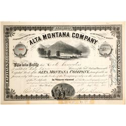 Alta Montana Co. Stock  (90311)