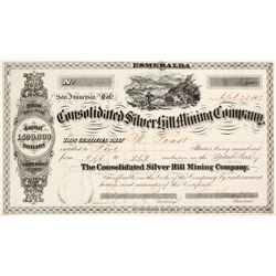 Consolidated Silver Hill Mining Company Stock - Early and Rare  (82007)
