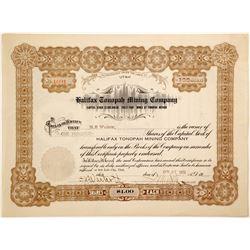 Halifax Tonopah Mining Company  (91038)