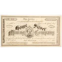 Rowe Silver Mining Company Stock  (88734)