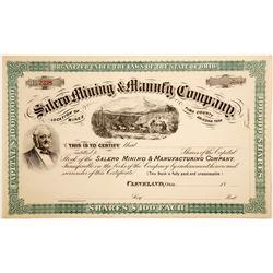 Salero Mining & Manufacturing Company  (91039)
