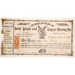 Delfina Silver and Copper Mining Stock  (90565)