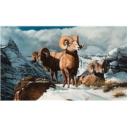 Gary Swanson-Rocky Mountain Bighorn