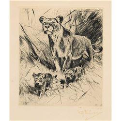Wilhelm Kuhnert-Lowen Mit Jungen (Lion with Cubs)
