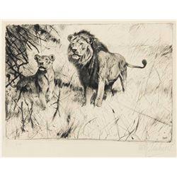 Wilhelm Kuhnert-Lion Pair
