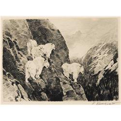 Carl Rungius-Goats