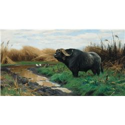 Wilhelm Kuhnert-A Buffalo in a Marsh