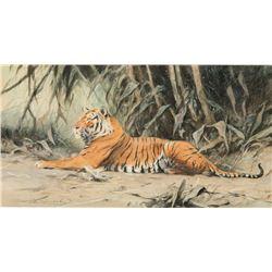 Wilhelm Kuhnert-Reclining Tiger