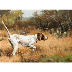 Luke Frazier-Texas Quail Hunter