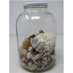JAR OF SEASHELLS