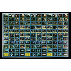 Lot # 624: Topps ROTJ Trading Cards Proof Sheet (Blue Ser