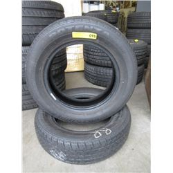 "2 Bridgestone ""Potenza"" Tires"