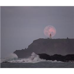 Wolf Moon Lighthouse - KAI Show, Patrick Ching 2019