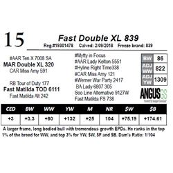 Fast Double XL 839
