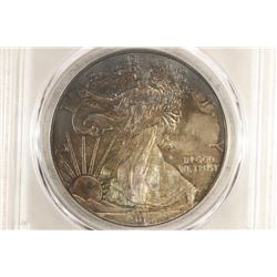 2013 AMERICAN SILVER EAGLE PCGS MS66 TONED