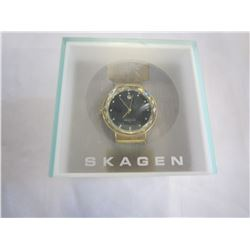 SKAGEN WATCH IN CASE