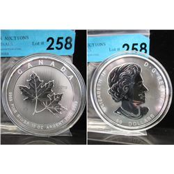 10 Oz Magnificent Maple .9999 Silver Coin