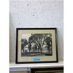 Vintage Framed Shriners Photograph